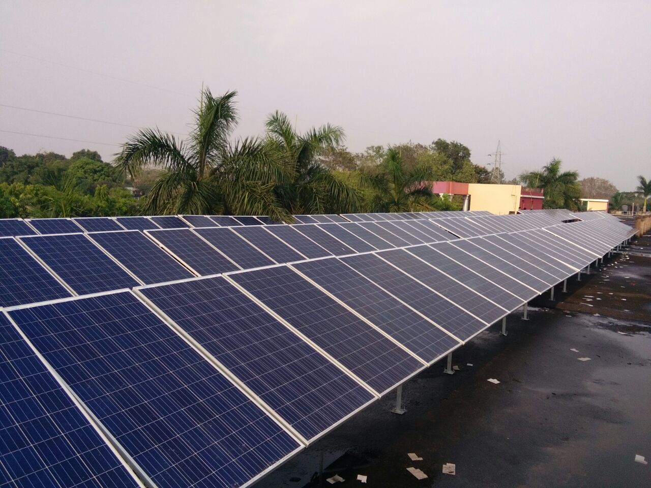 Lubi Solar Launch PERC Solar Panels! Latest PERC Technology in India